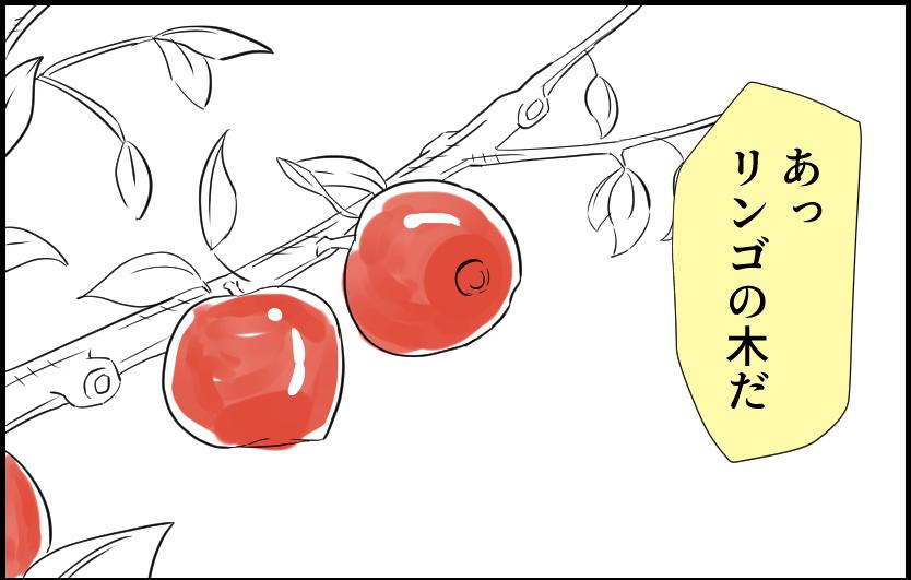 あっりんごの木だ りんご 実 視力 目 4コマ漫画